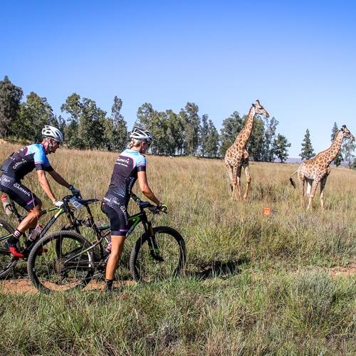 MTB Feat | Biogen SA | SA's Premier MTB Races are coming to town